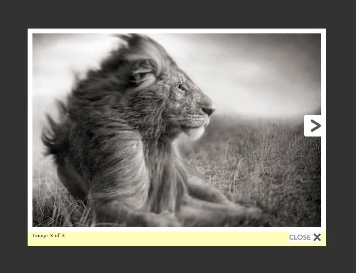 http://parswp.ir/wp-content/uploads/2015/10/wp-lightbox-2-screenshot-11.jpg