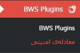 BWS-plugin-parswp