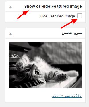 hide_feature_image_parswp