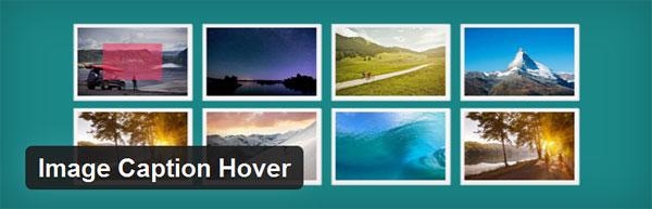 آموزش ساخت کپشن برای تصاویر در وردپرس با Image Caption Hover